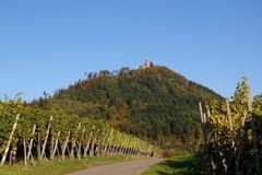 Yburg Herbst 7 autumn