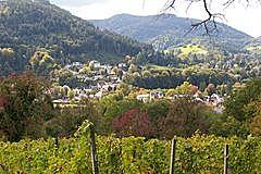 Lichtental vom Schafberg