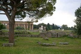 Paestum Tempio della pace  Tempio di Netturno