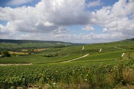 Guck mal rein: Champagne - Picardie