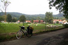 Mangfall-Knie die Kronengans Mangfall Valley (south of Munich)