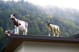 Guck mal rein: Kaiserwinkl / Chiemgauer Alpen (Tirol)