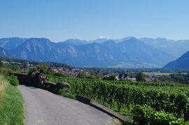 Heidiland Rheintal - Maienfeld - Landquart (ganz hinten) Plessur-Alpen  Heidiland - Heidi Town Alps Rhine Valley - Maienfeld - Landquart (far background) Plessur Alps Range, Grisons
