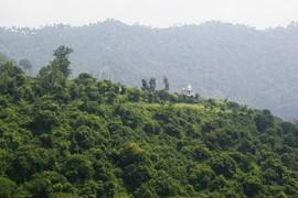 near Dharampur