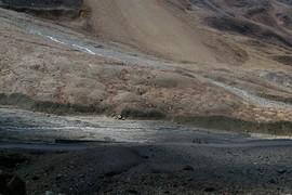 Bagha River