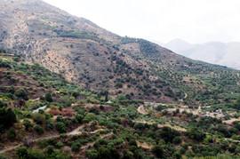Orno Oros near Tourloti