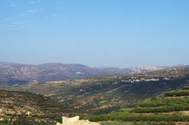 bei/near Sikia Agios Spiridon